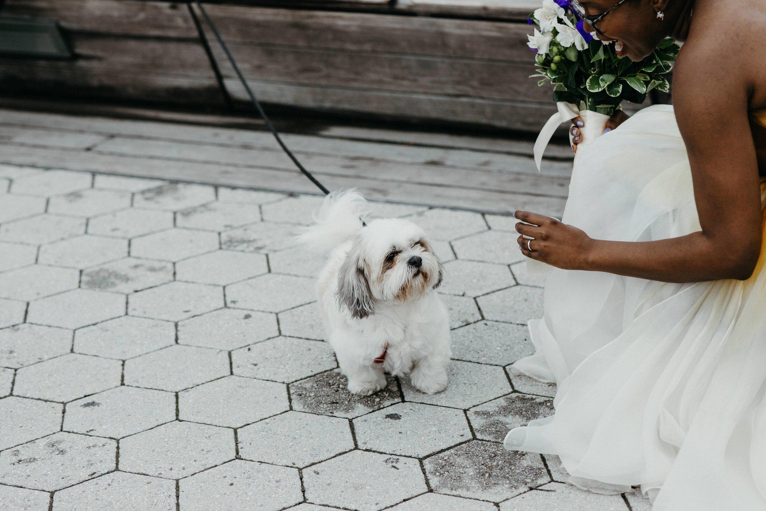 Sevlynn-Photography-Wedding-LIC-Landing-Maiella-NYC-50.jpg