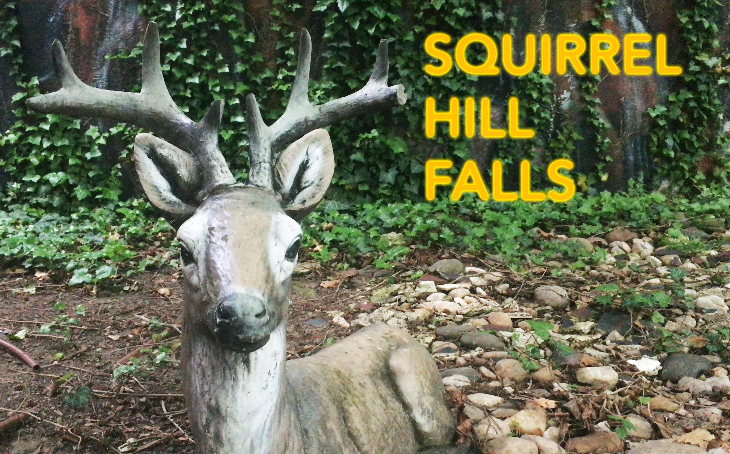 Squirrel Hill Falls .jpg