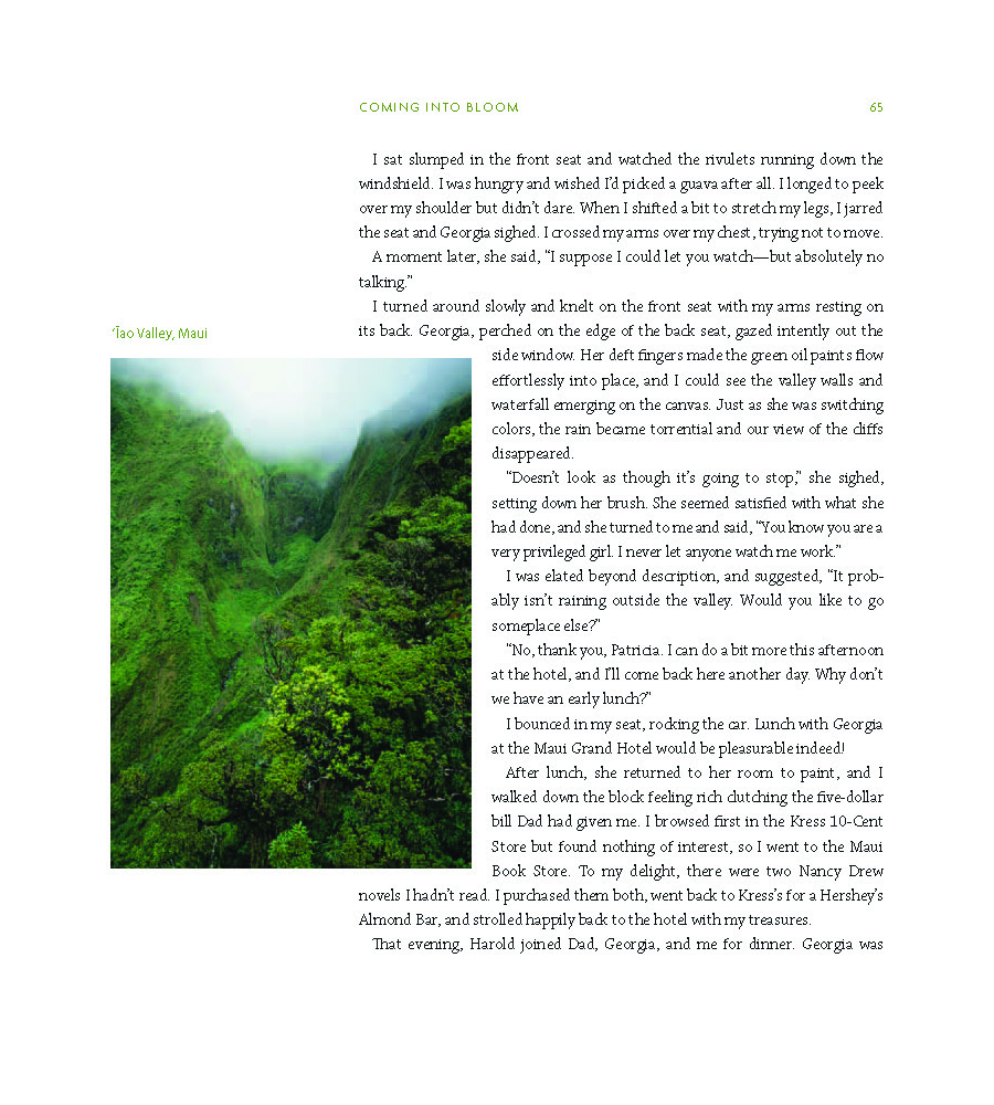 Georgia O'Keefe's Hawaii book_Page_075.jpg