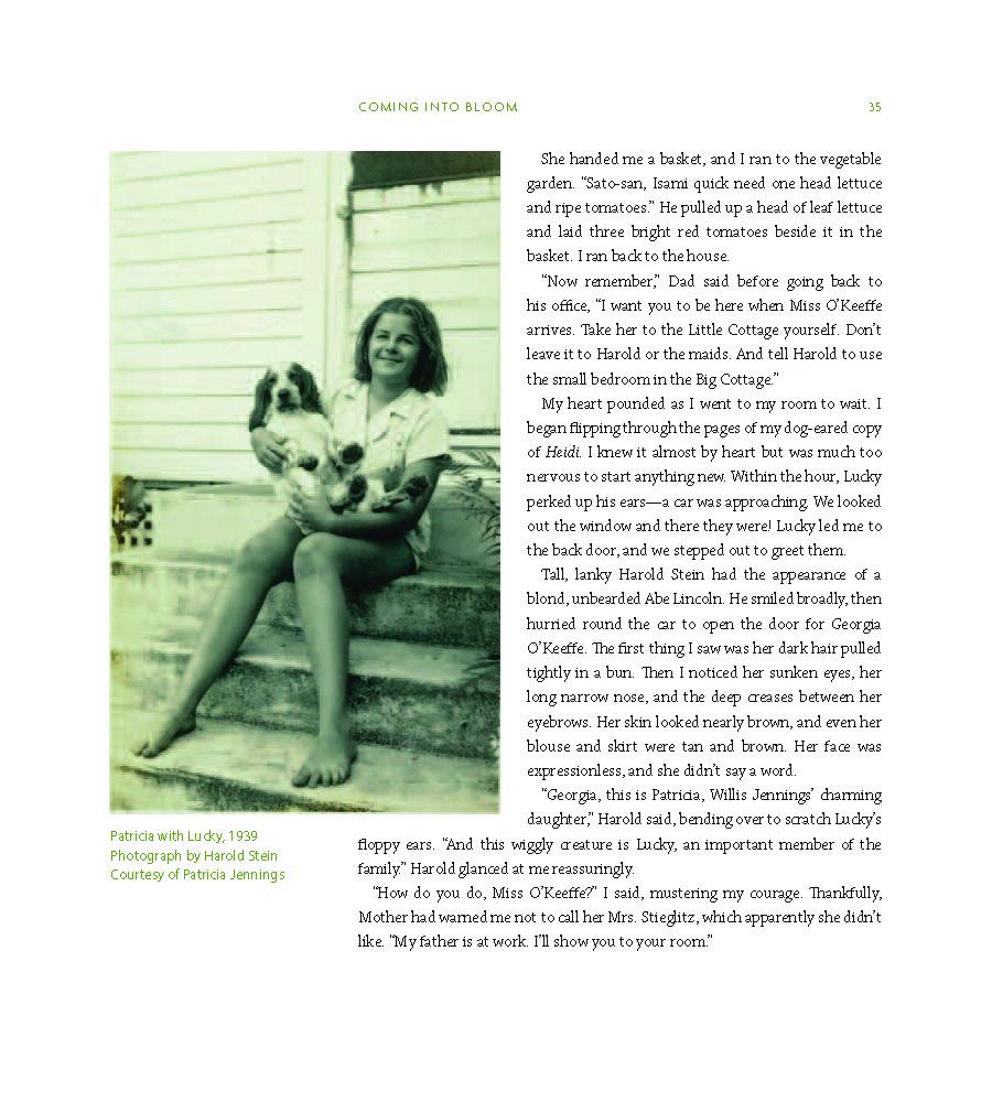Georgia O'Keefe's Hawaii book_Page_045.jpg
