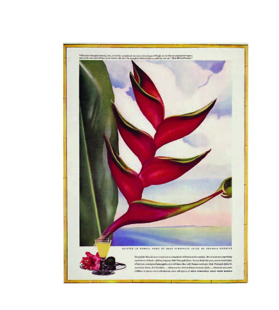 Georgia O'Keefe's Hawaii book_Page_109.jpg
