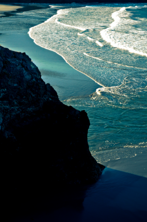 David Jordan Williams - ocean