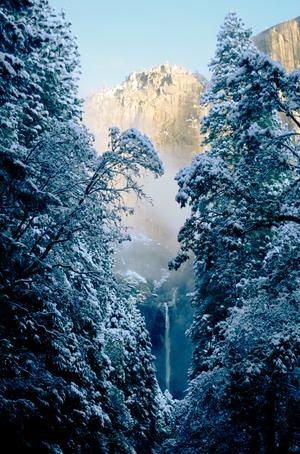 David Jordan Williams - winter