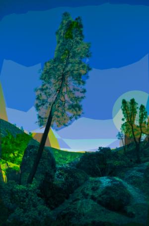 David Jordan Williams -  exotic landscape