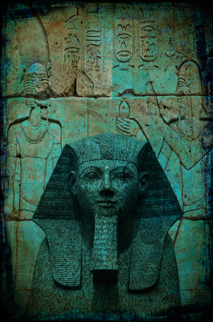 David Jordan Williams -  egypt