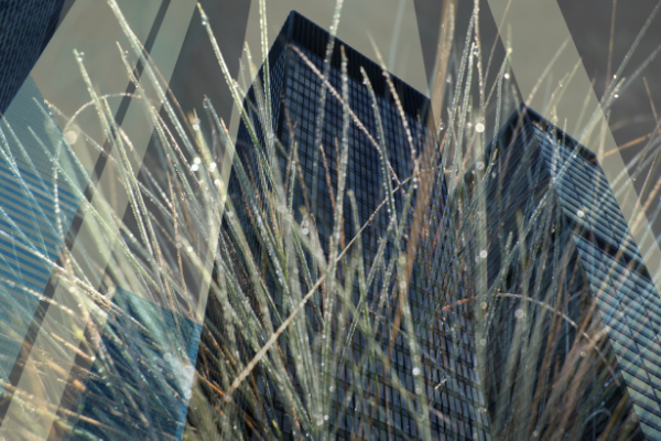 David Jordan Williams -  architecture abstract