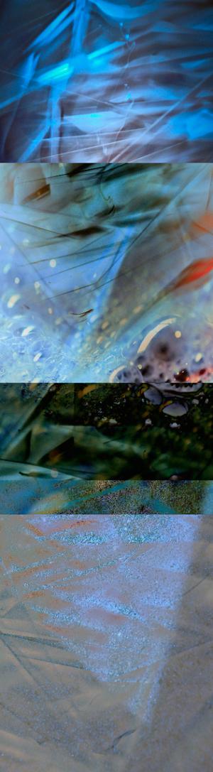 David Jordan Williams - vertical fragments