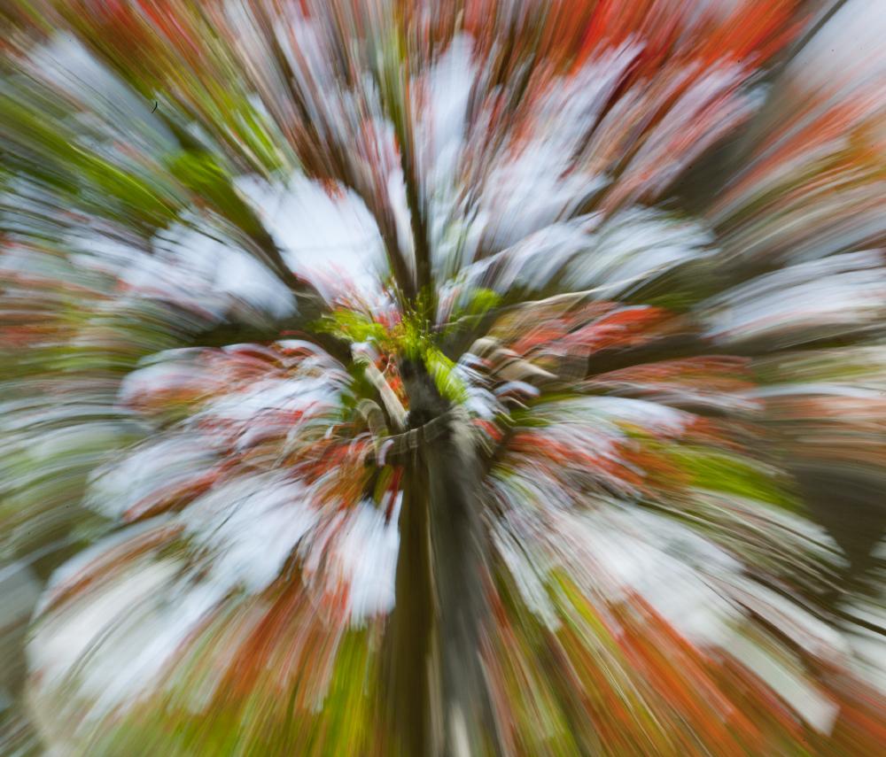 Geoffrey Baris abstract