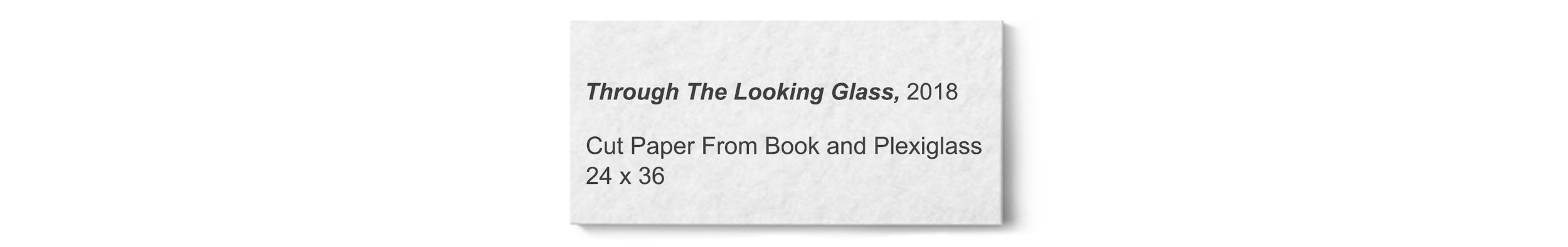 © David Gary Lloyd - Label - Through The Looking Glass.jpg