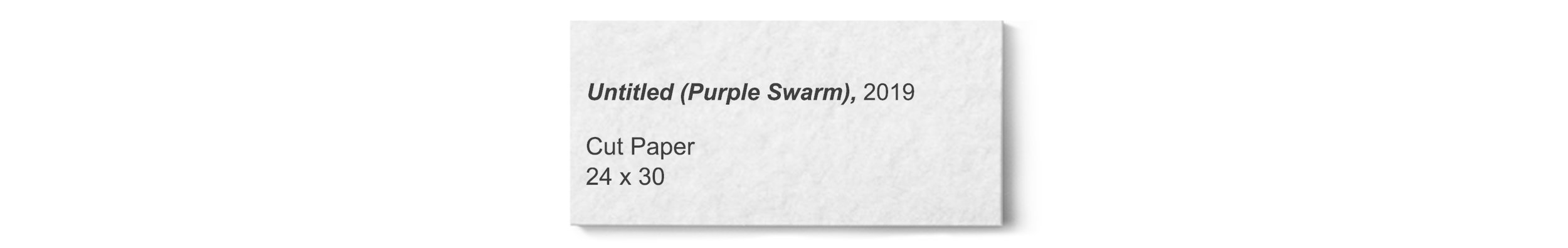 © David Gary Lloyd - Label - Purple Swarm.jpg