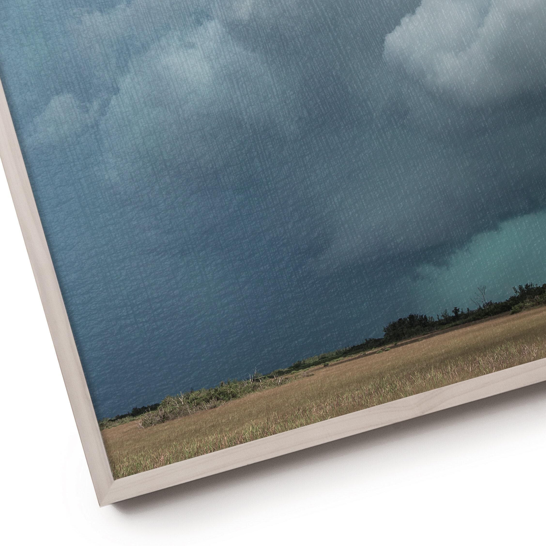 © David Gary Lloyd - Strength In The Wind - IMG_0434 Zoom.jpg