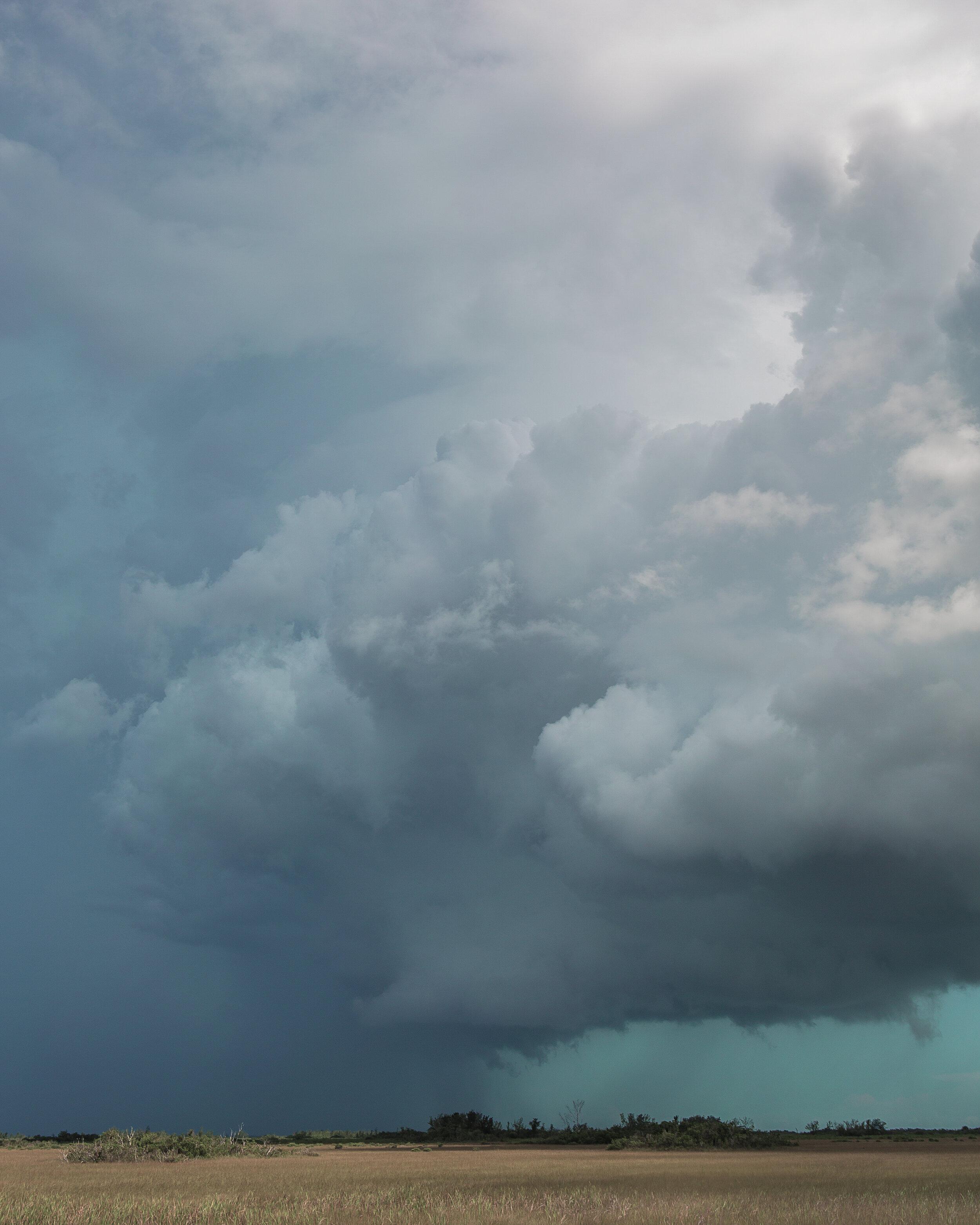 © David Gary Lloyd - Strength In The Wind - IMG_0885.jpg