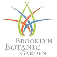 bbg logo.jpg