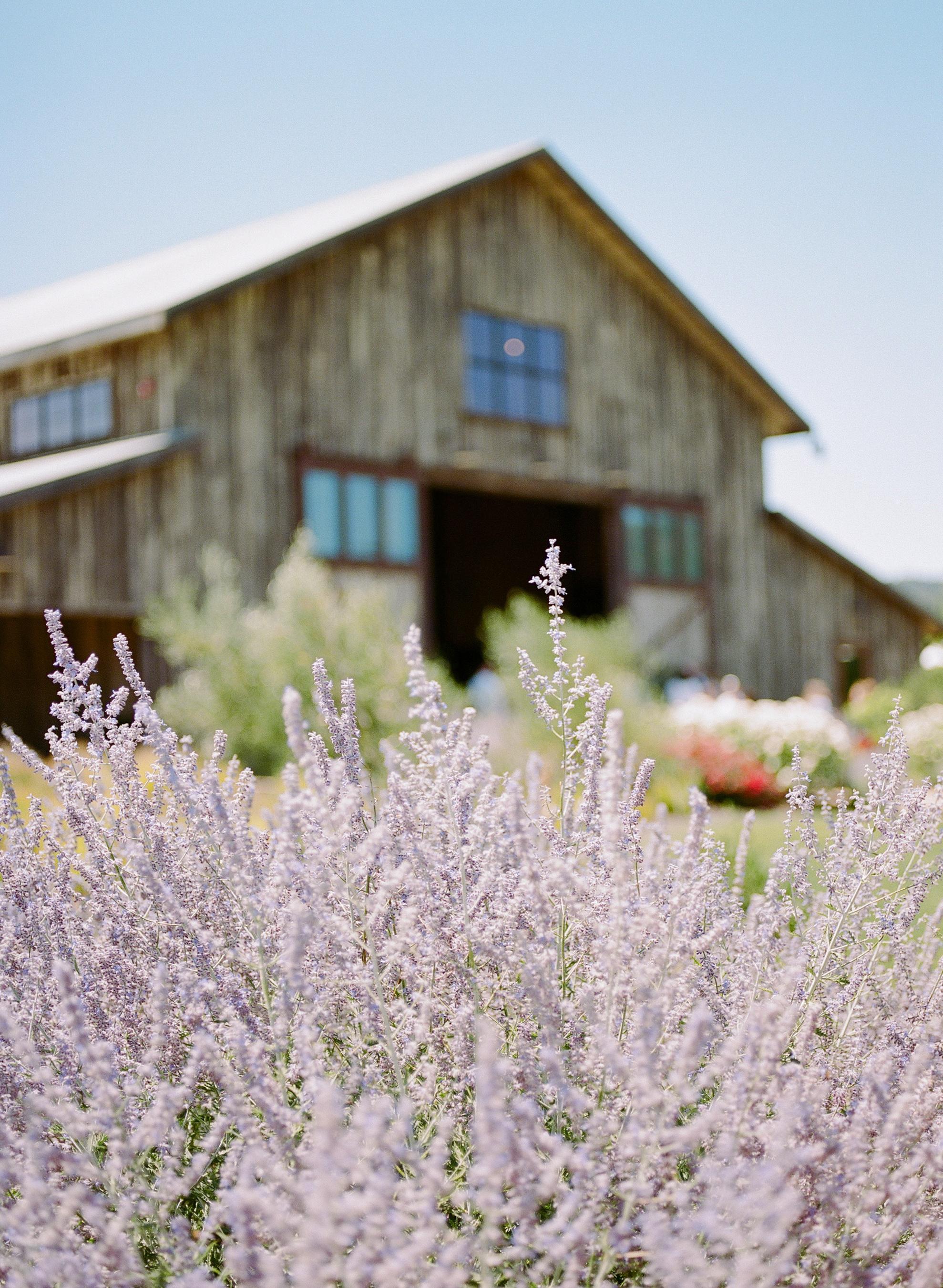Paula le duc - the barn at green valley - napa valley, california