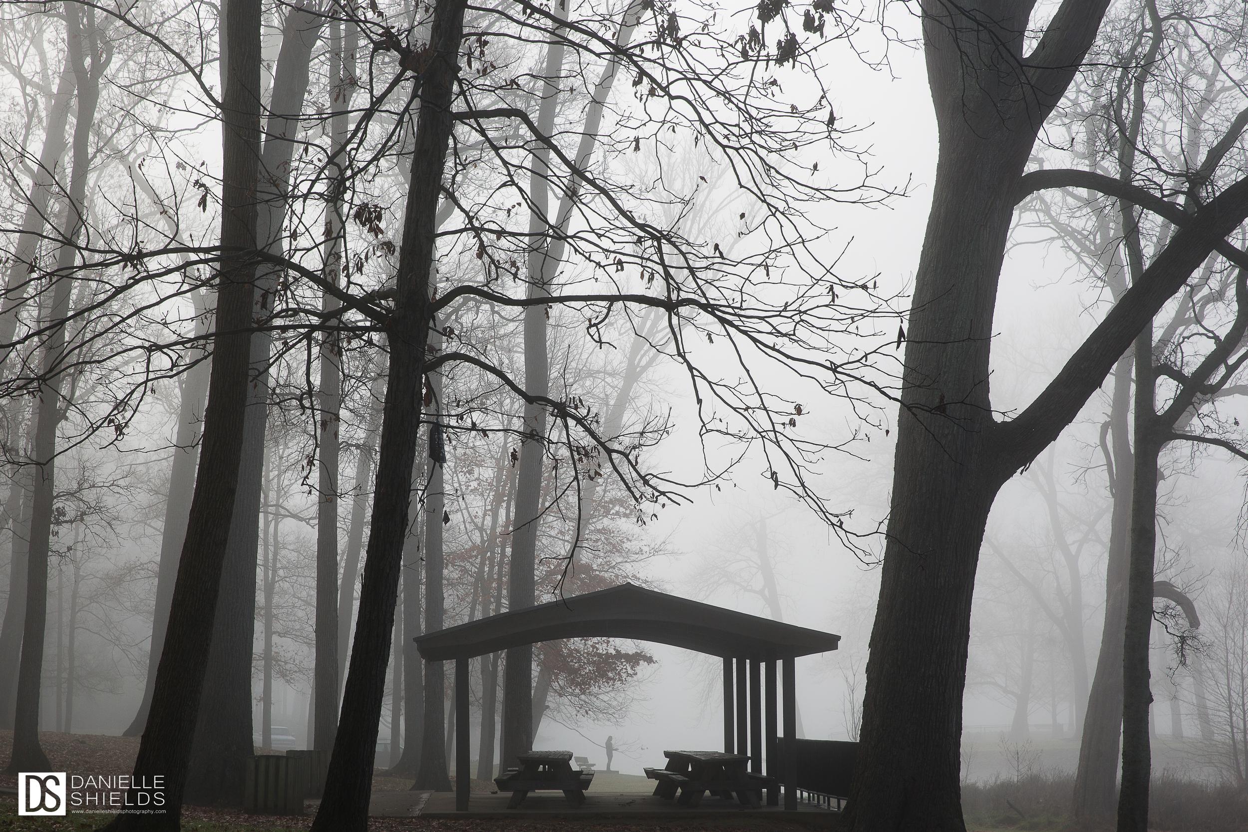 Dec Fog 1.jpg