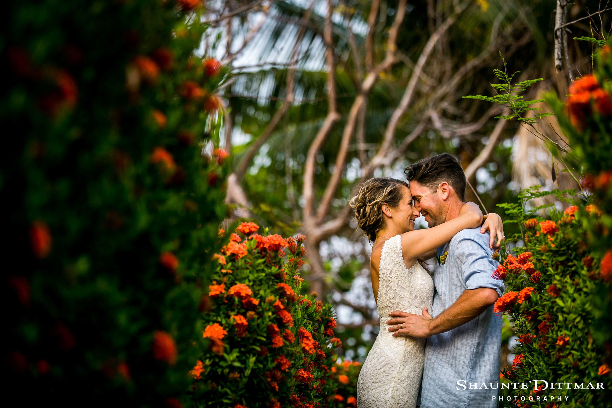 Beaches and Dreams Boutique Hotel Belize Wedding Venue