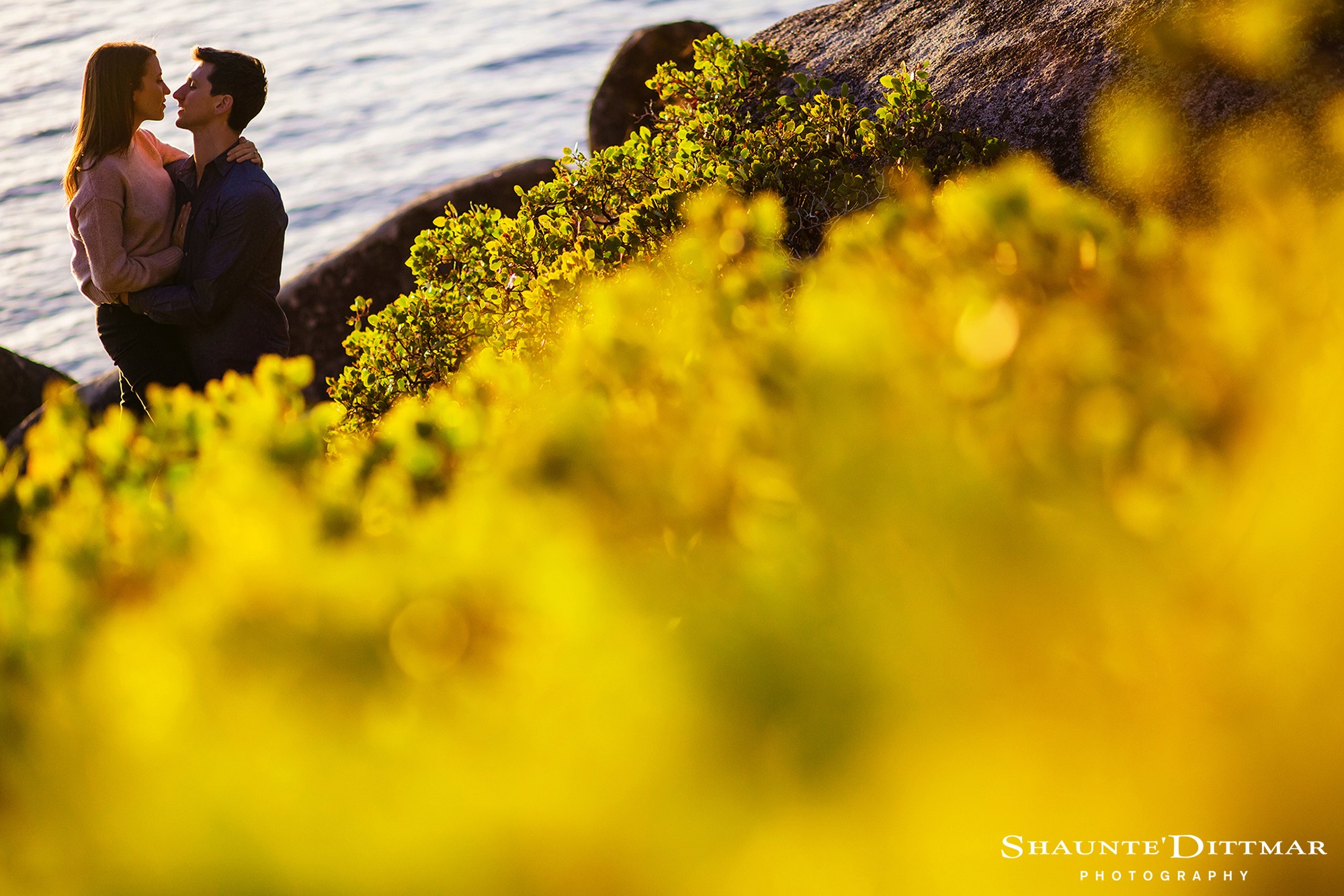 Kim_Daniel_350_Bonzai_Rock_Engagement_Lake_Tahoe_Shaunte_Dittmar_Photography.jpg