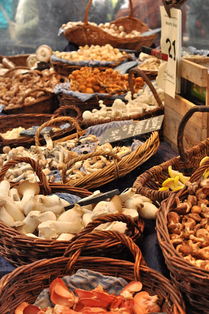 look at all those gorgeous mushrooms