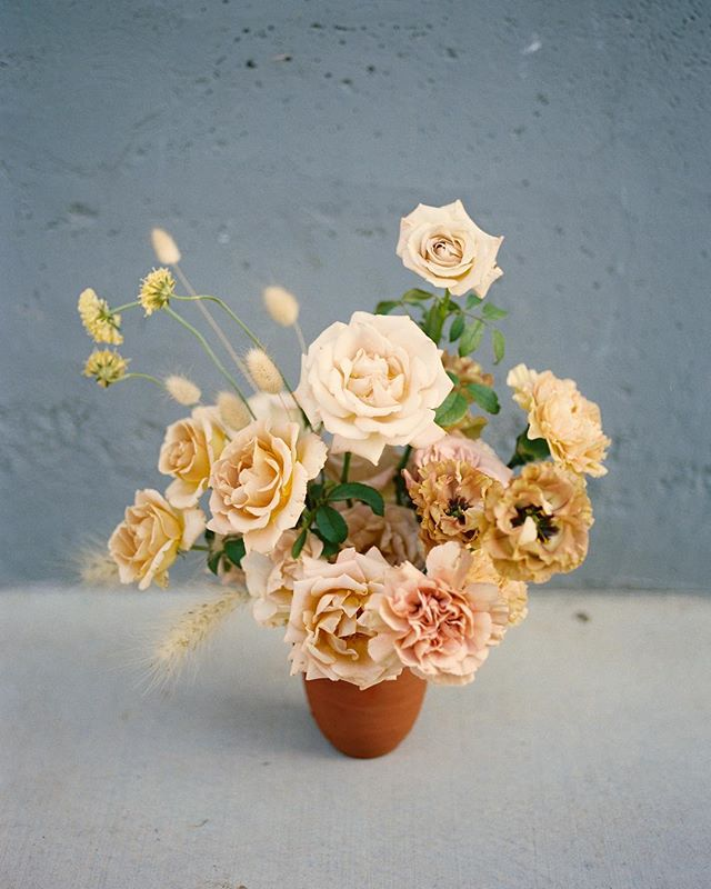 Sweet little golden babe, just because✨ #dsfloral #floraldesign #dscolor #lavendersflowers