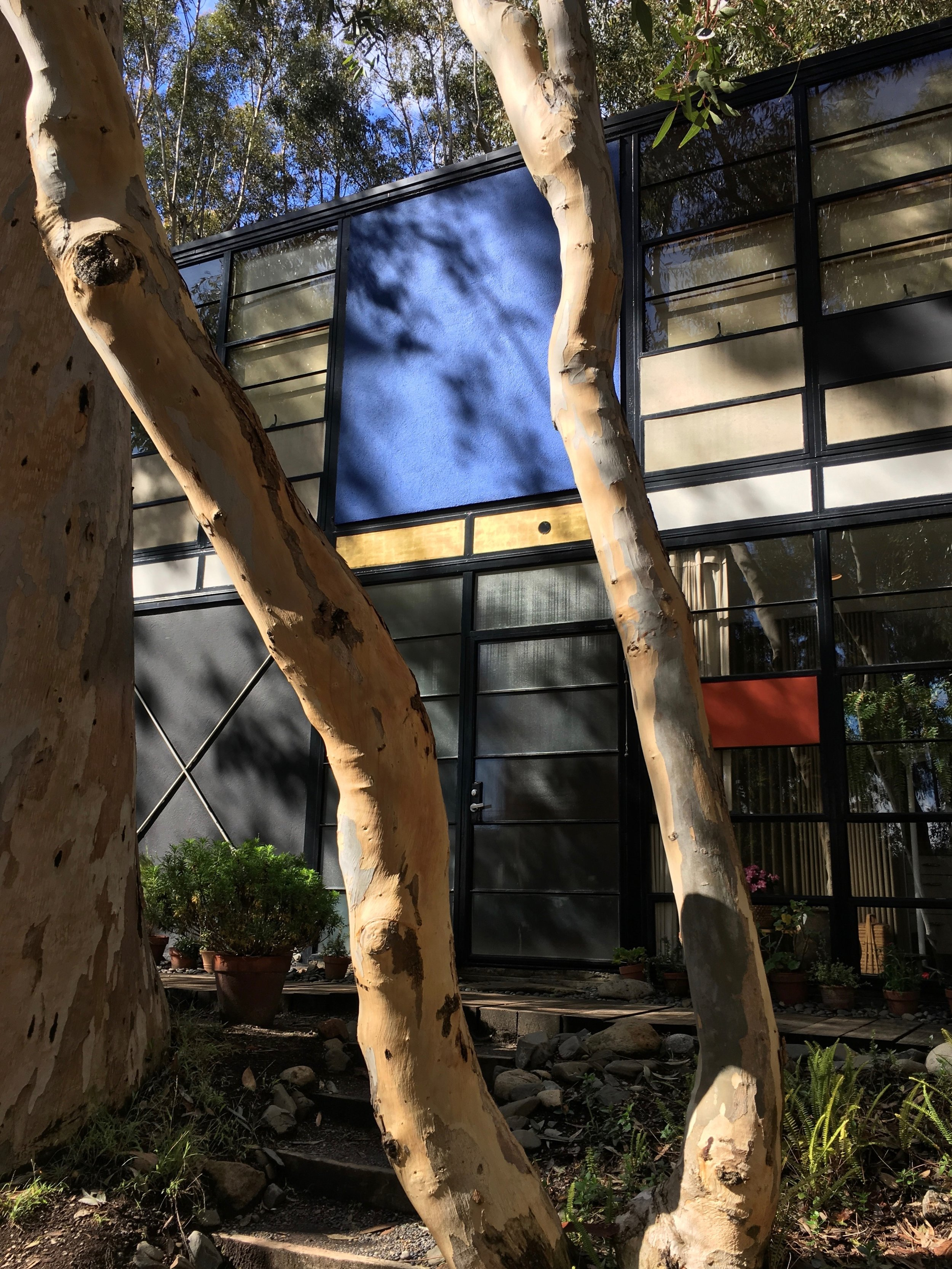 Entrance to Eames House, Pacific Palisades, California (Charles and Ray Eames, 1949) Photo: Christine Cipriani