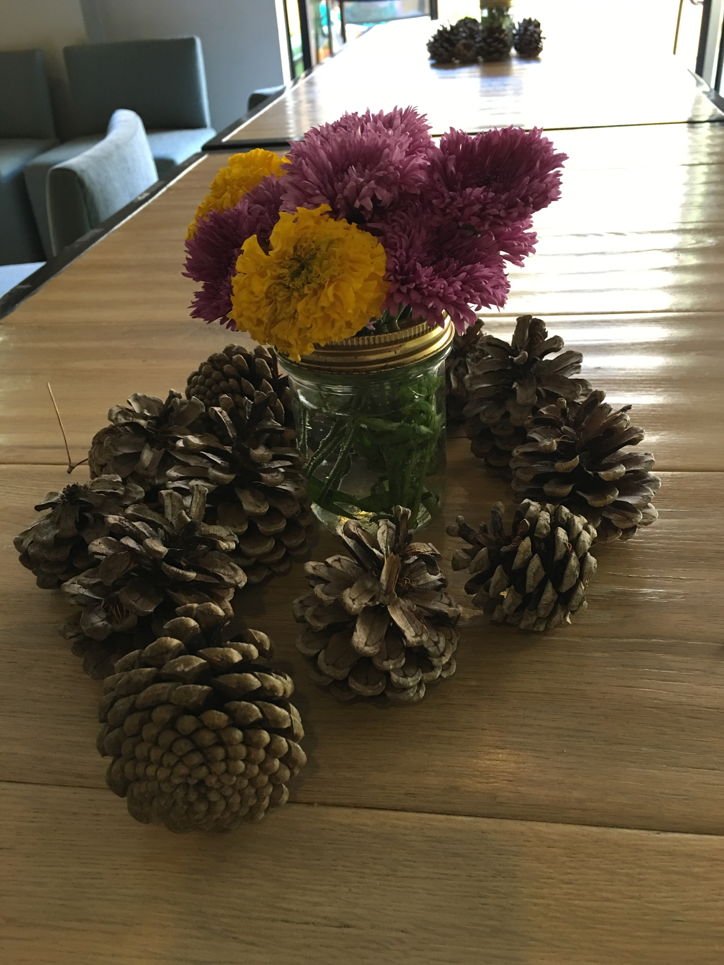 backyard gathered pinecones, and flowers simply arranged in a short mason jar