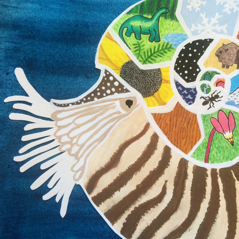 """""""The Nautilus,"""" watercolor, acrylic paint, colored pencil, marker, and ink on bristol and watercolor paper"""