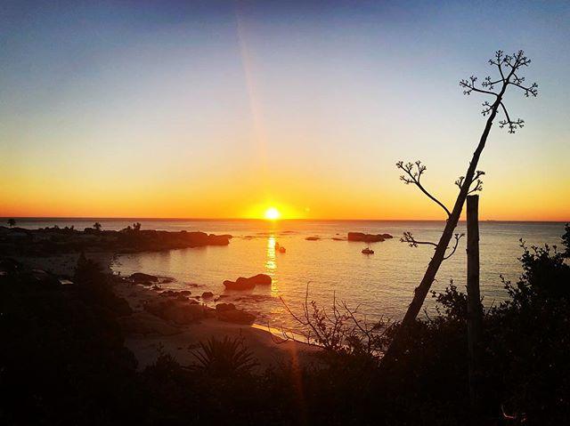 Clifton Summer Sunset ❤️#capetown #sunset #summer #love #travel