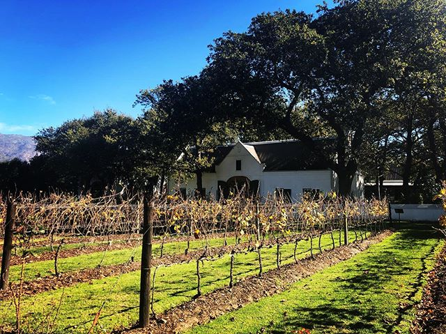 Beautiful day out in Franschhoek at La Motte Wine Estate. #travel #wine #luxury #franschhoek #southafrica🍷