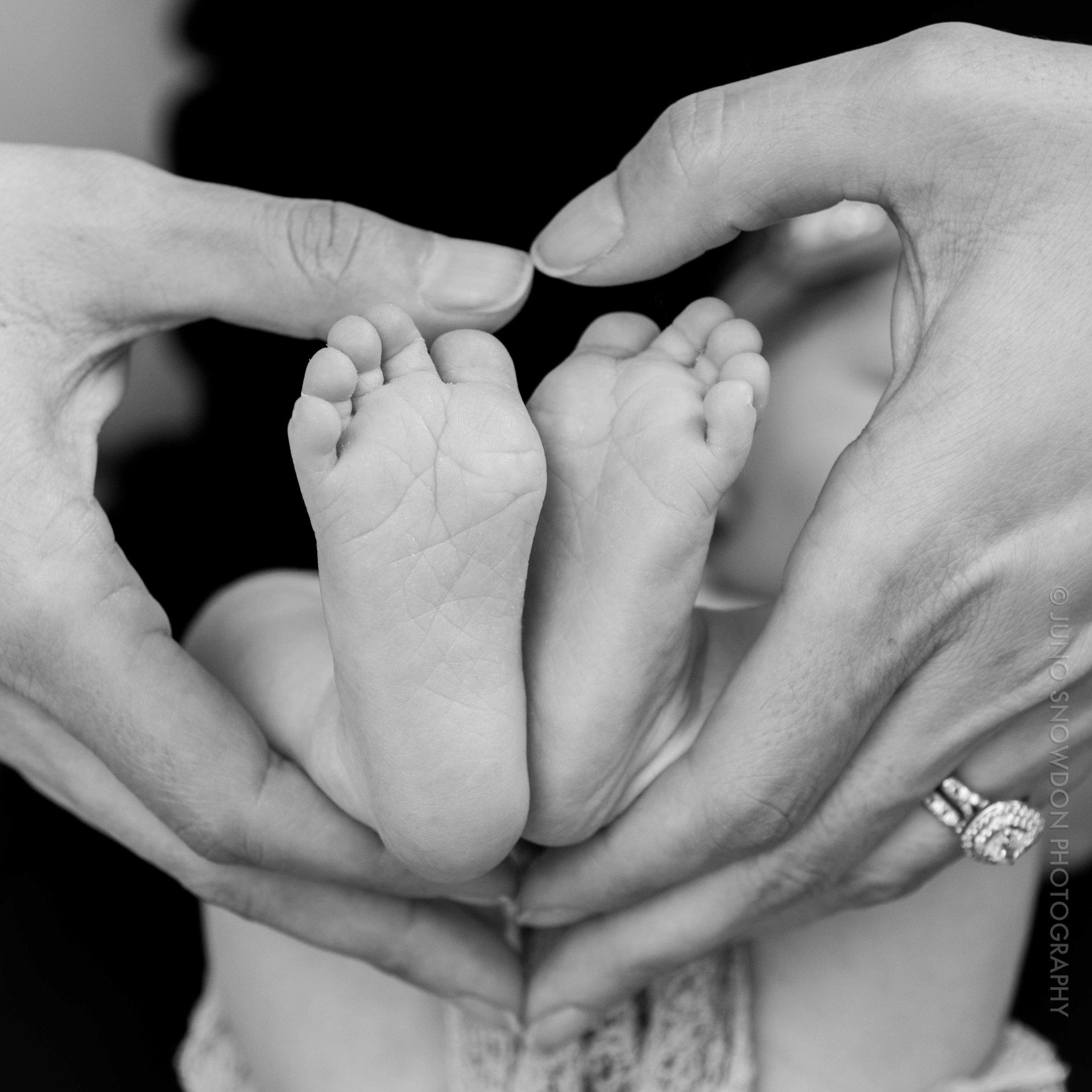 juno-snowdon-photography-newborn-7252.jpg