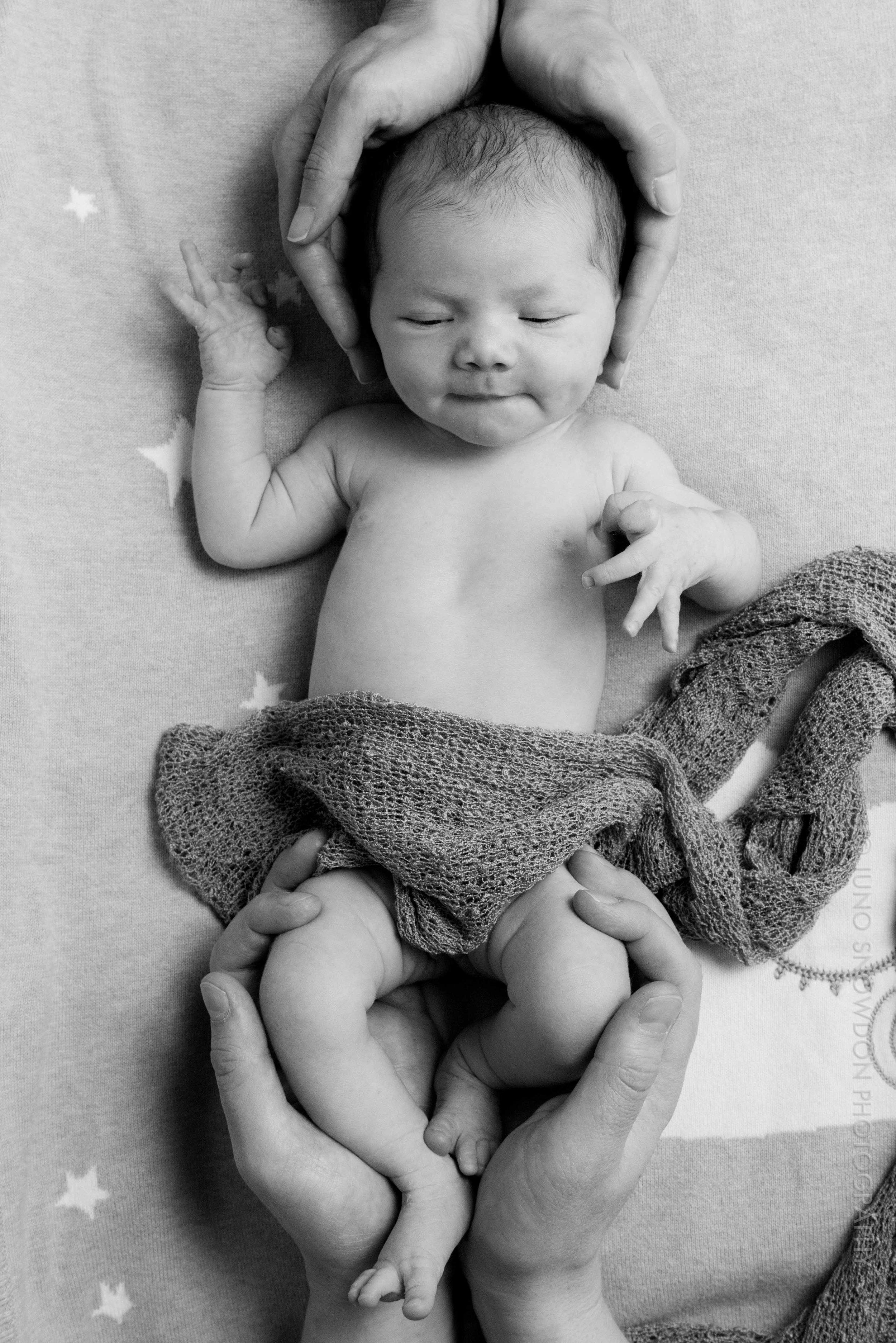 juno-snowdon-photography-newborn-portrait-7103.jpg