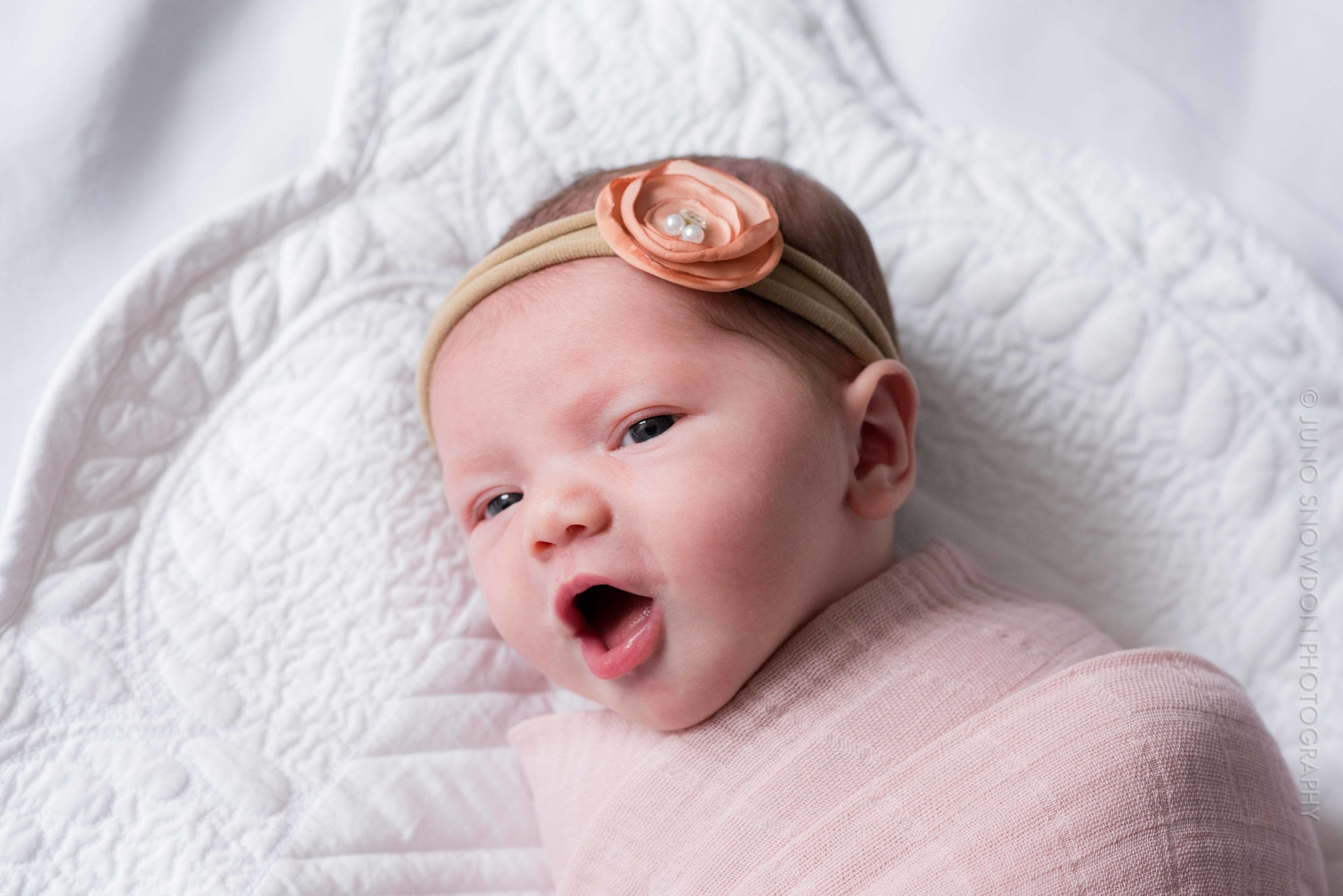 juno-snowdon-photography-newborn-portrait-7312.jpg
