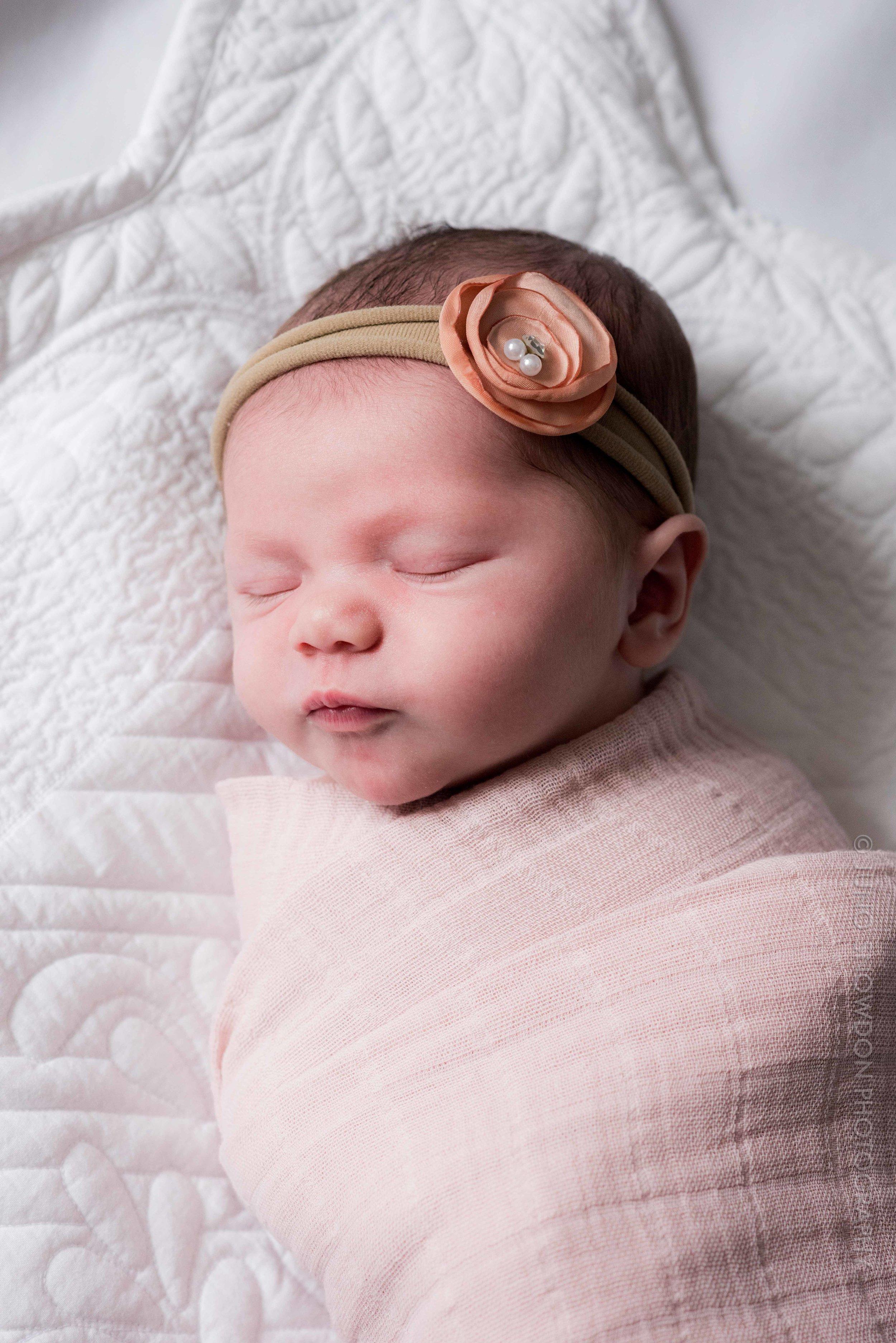 juno-snowdon-photography-newborn-portrait-7313.jpg