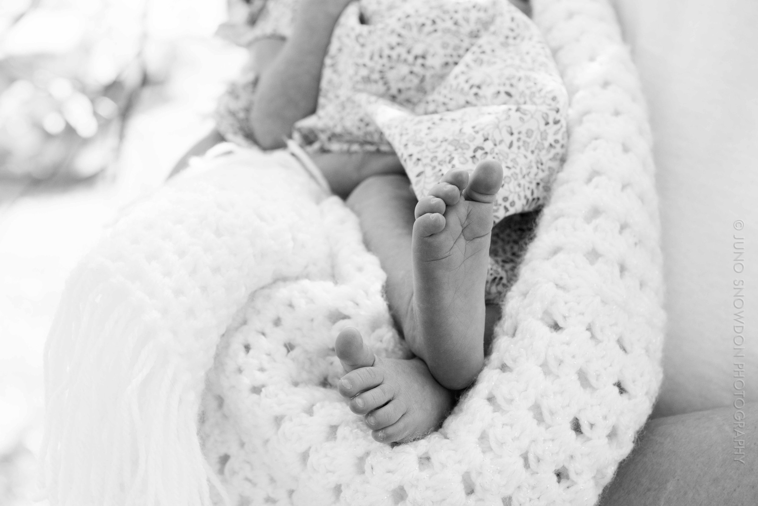 juno-snowdon-photography-newborn-6019.jpg