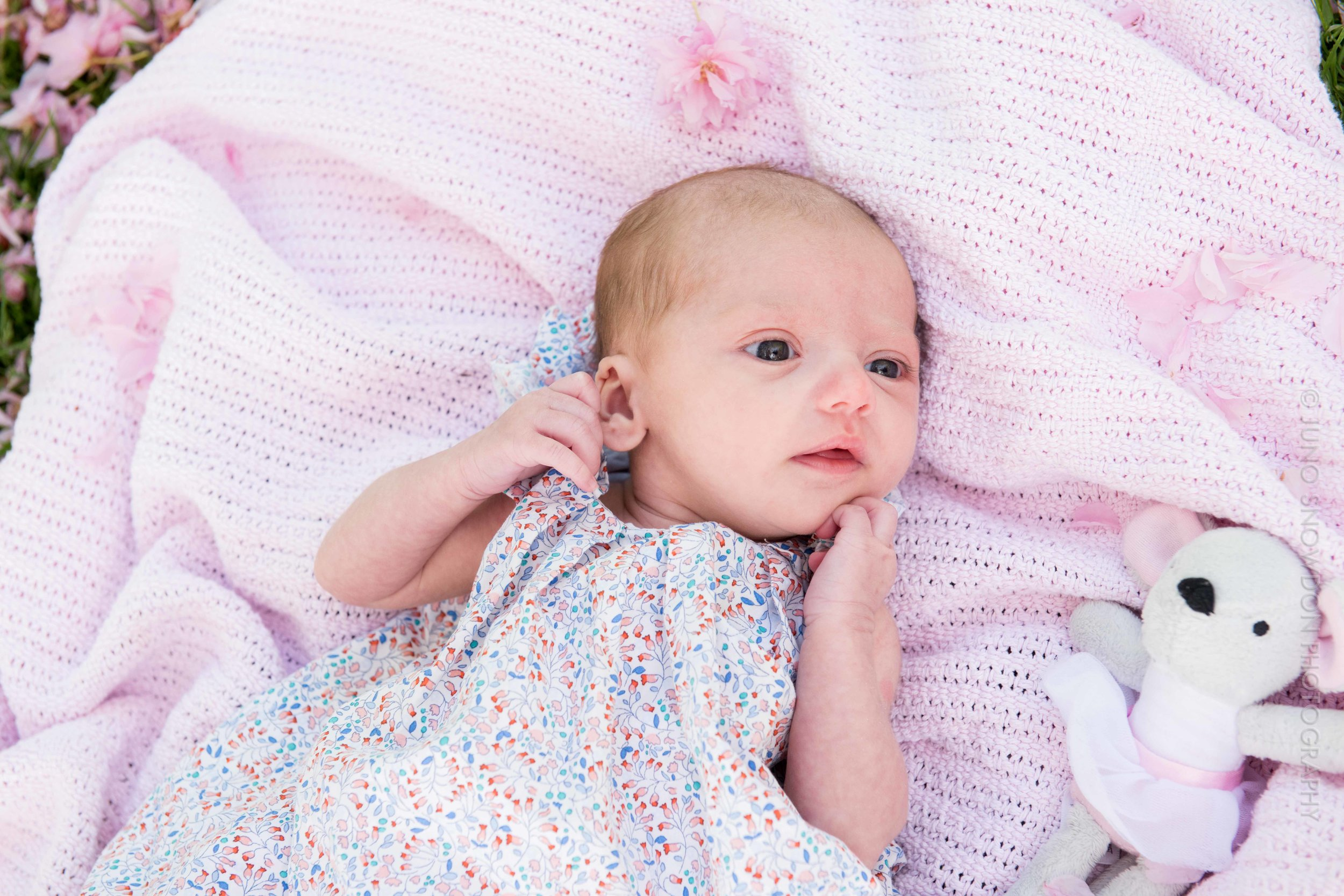 juno-snowdon-photography-newborn-6048.jpg