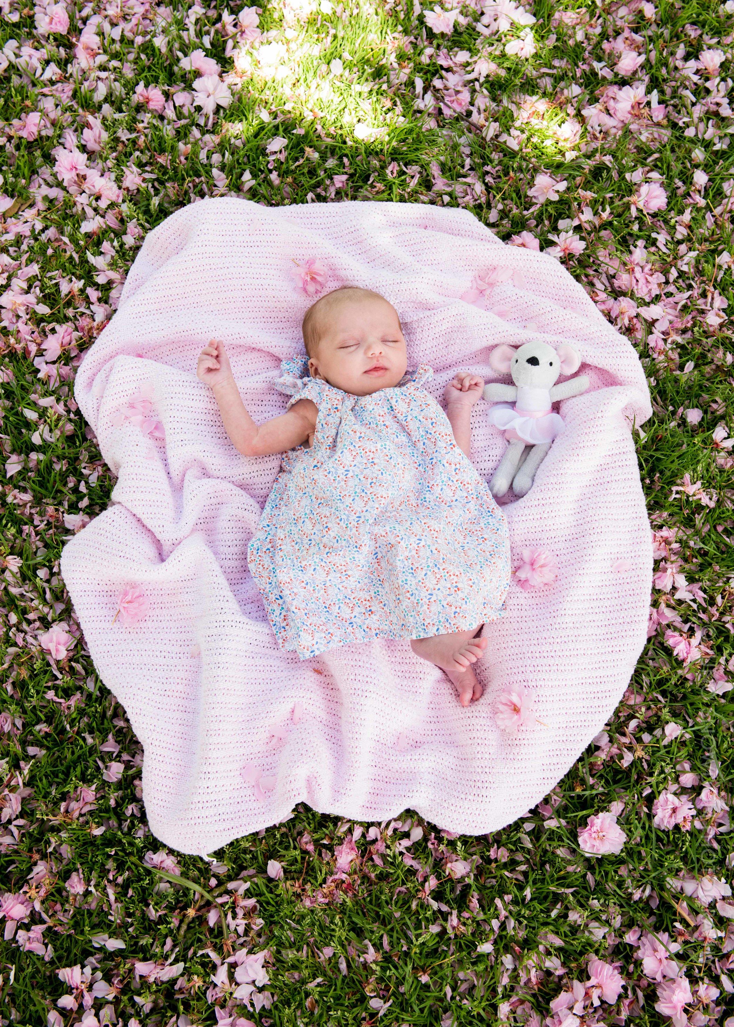 juno-snowdon-photography-newborn-6042.jpg
