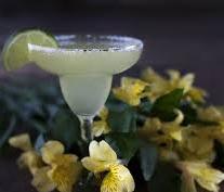 images-cocktail.jpeg