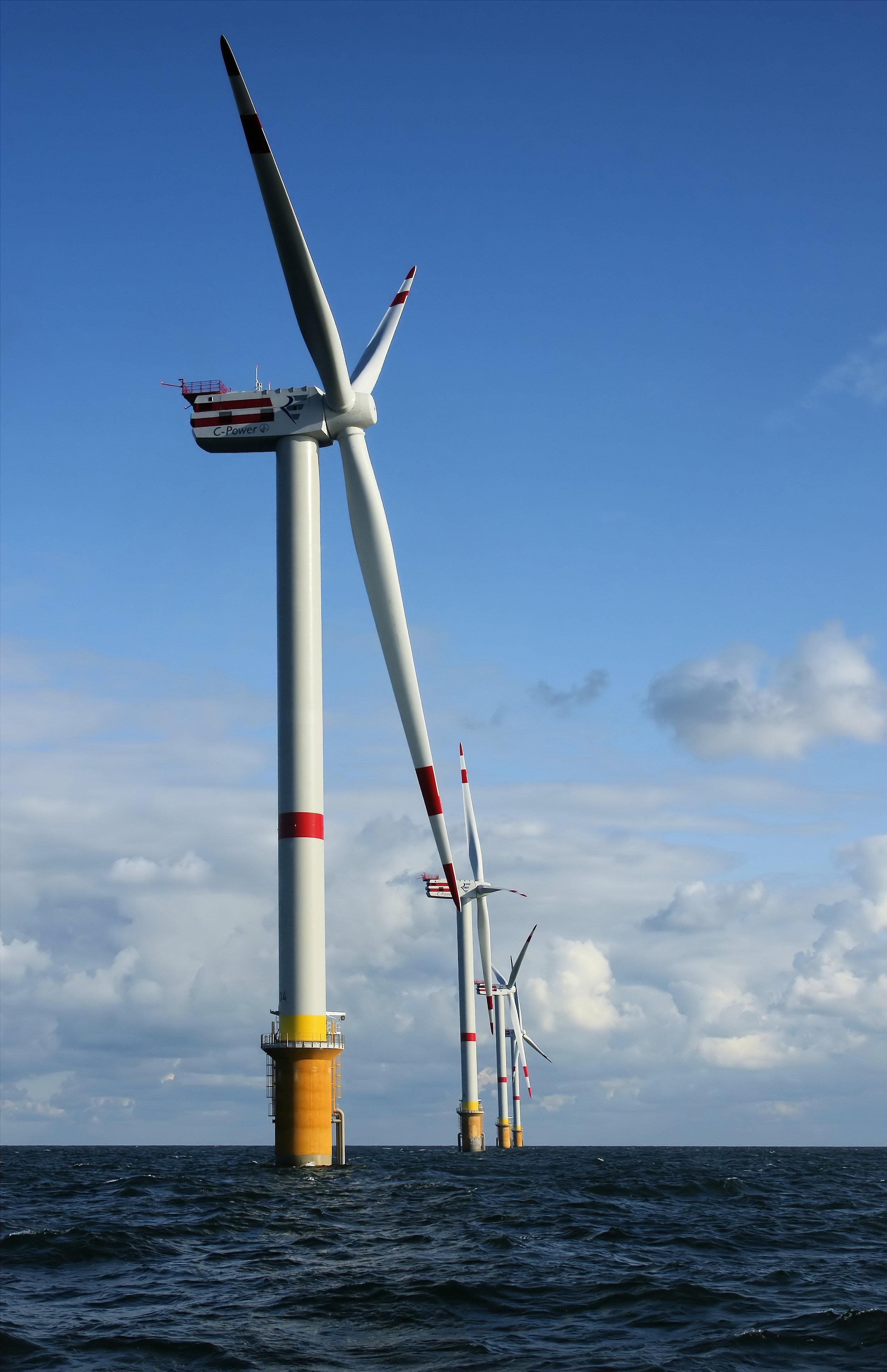 Windmills_D1-D4_(Thornton_Bank).jpg