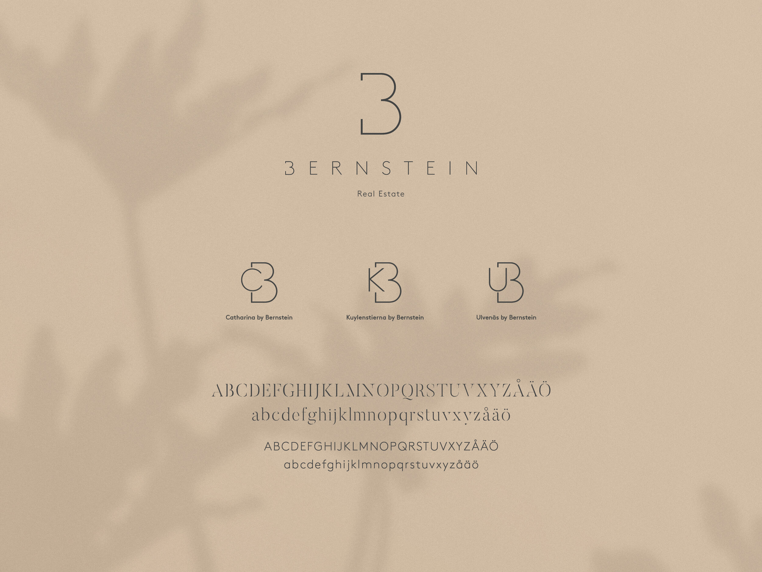 Business Card Mockup_Bernstein-Logo.jpg