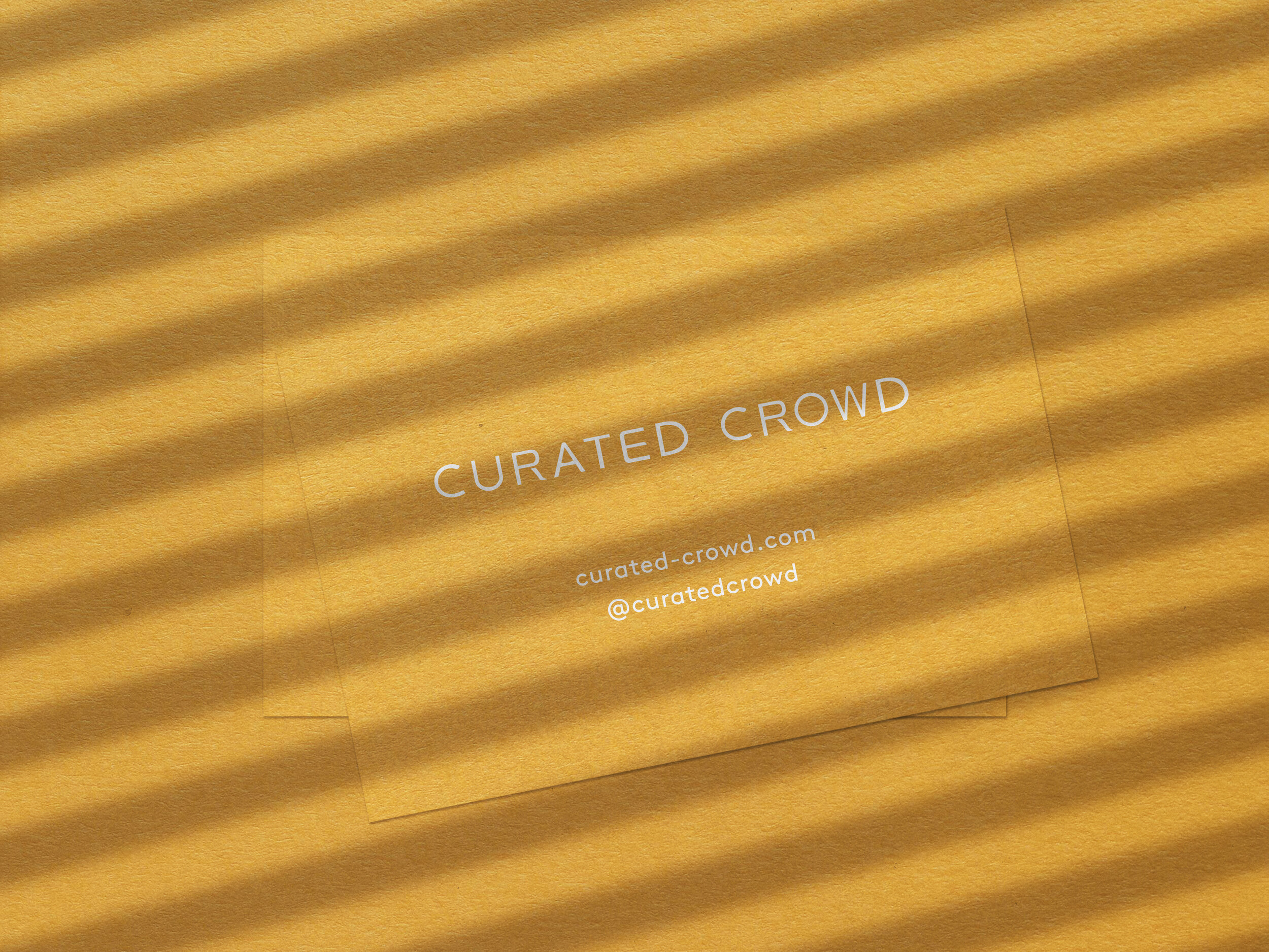 Curated Crowd_3.jpg