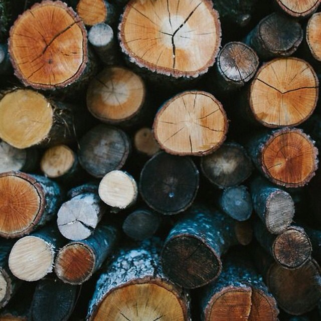 This weather's getting us ready for December, log fires & layered-up walks🌰🍁 #winter #logs #fire