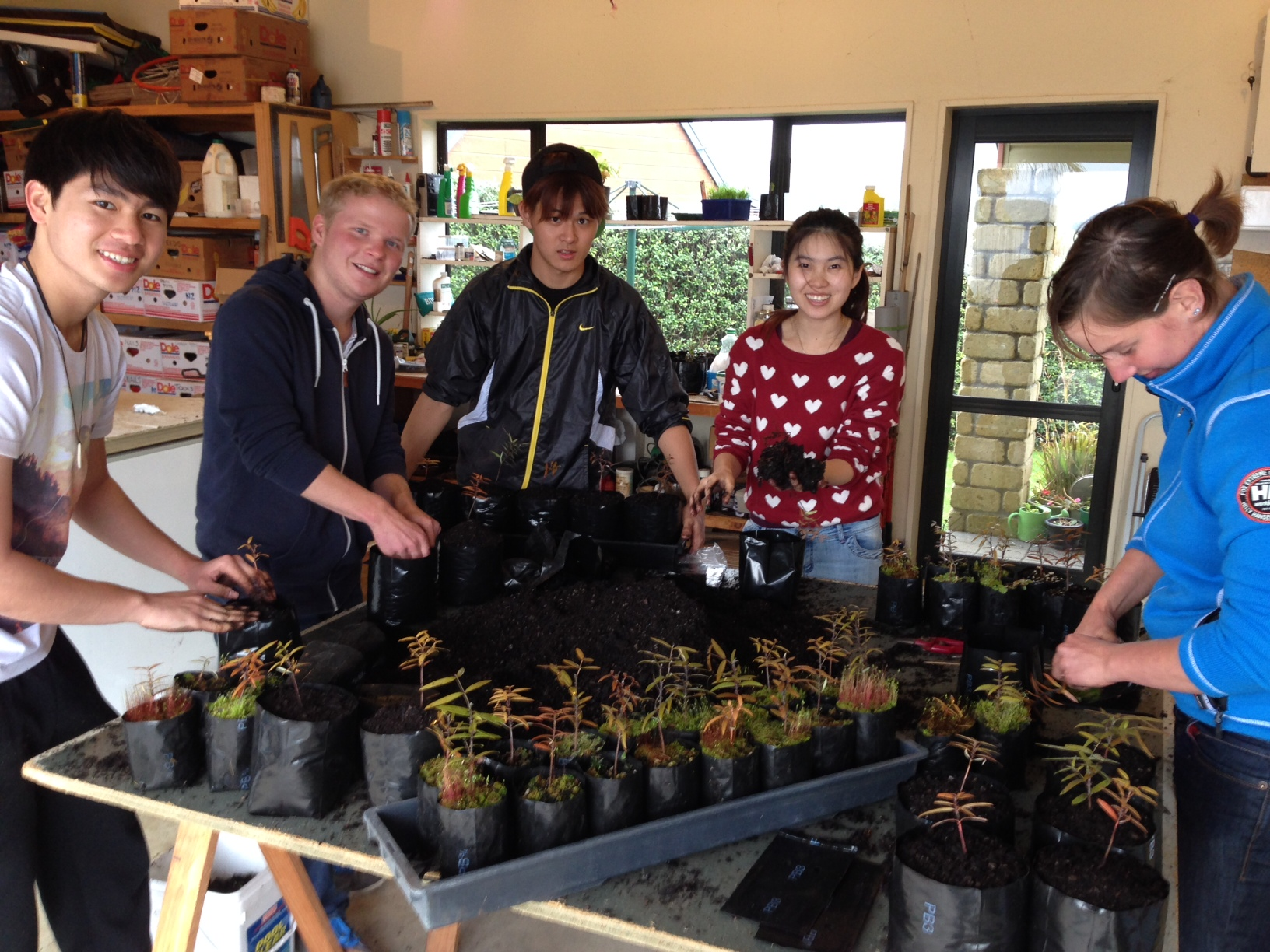 Pond, Roger, Kosiu, Pang and Sandra getting their hands dirty.