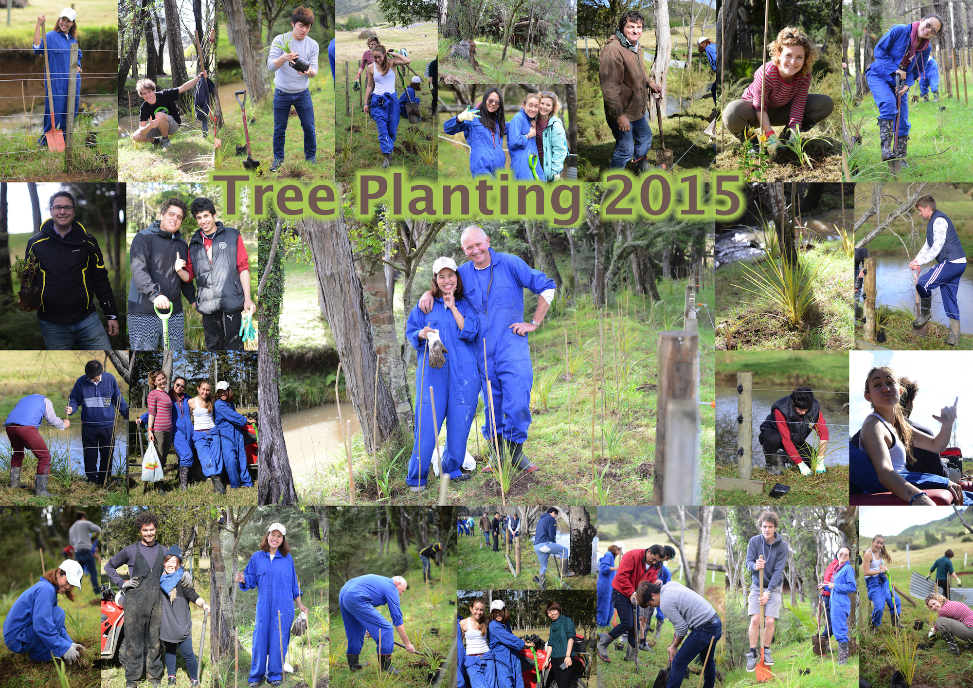 Tree Planting 2015.jpg