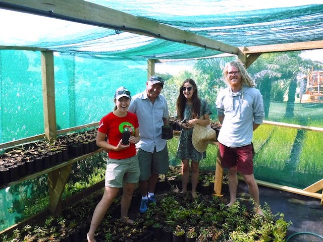 """Alicia and Kim from COLC with Liam and Hanna from """"The Rubbish Trip"""" amongst our Kauri trees in the COLC nursery"""