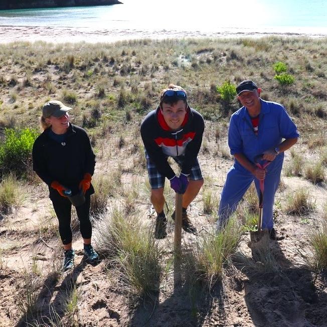 sand dune 3.jpg