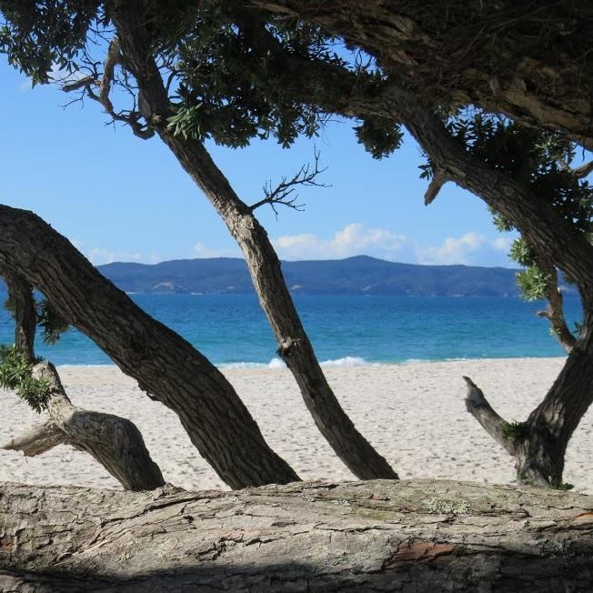 otama beach.jpg