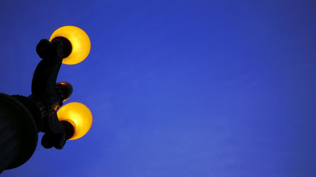 Bulbs in the evening.jpg