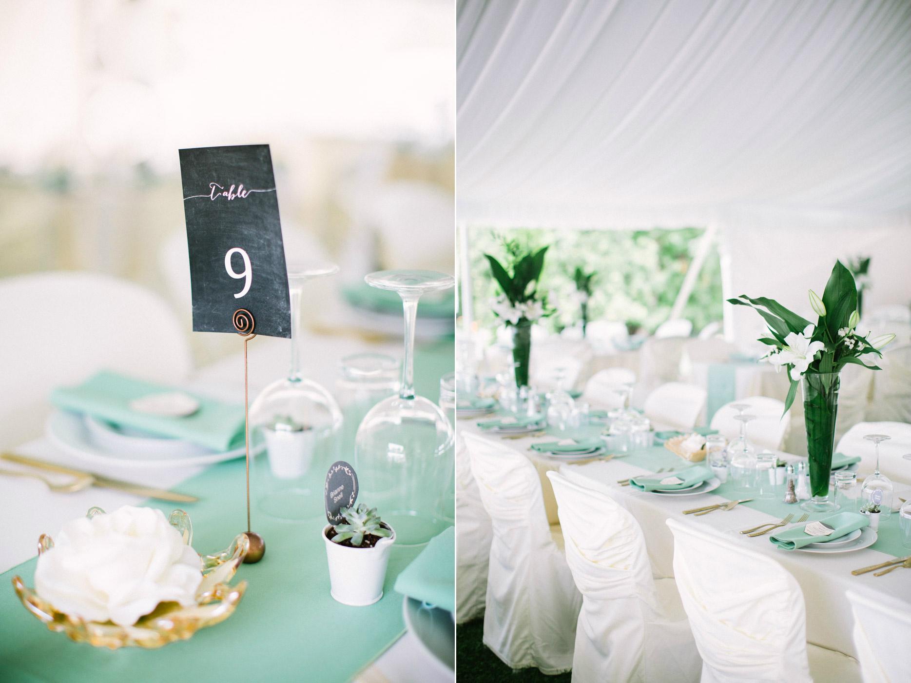 Backyard_collingwood_waterfront_diy_wedding2.jpg