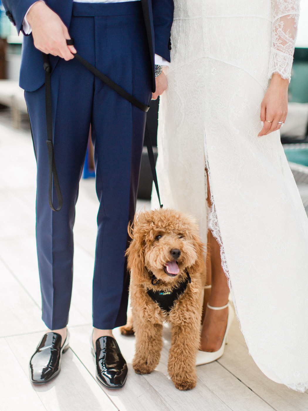 -Bride, groom , and puppy at vogue styled wedding in downtown Toronto.  Captured by Toronto wedding photographer, Corynn Fowler Photography.
