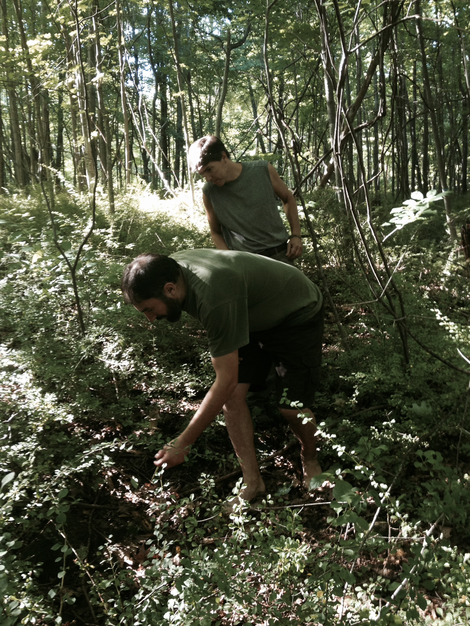 Eastern Woodland Learning's teachers Andy Dobos and Rick Bette examine the subtleties of the forest floor while touring our 40-acre site.