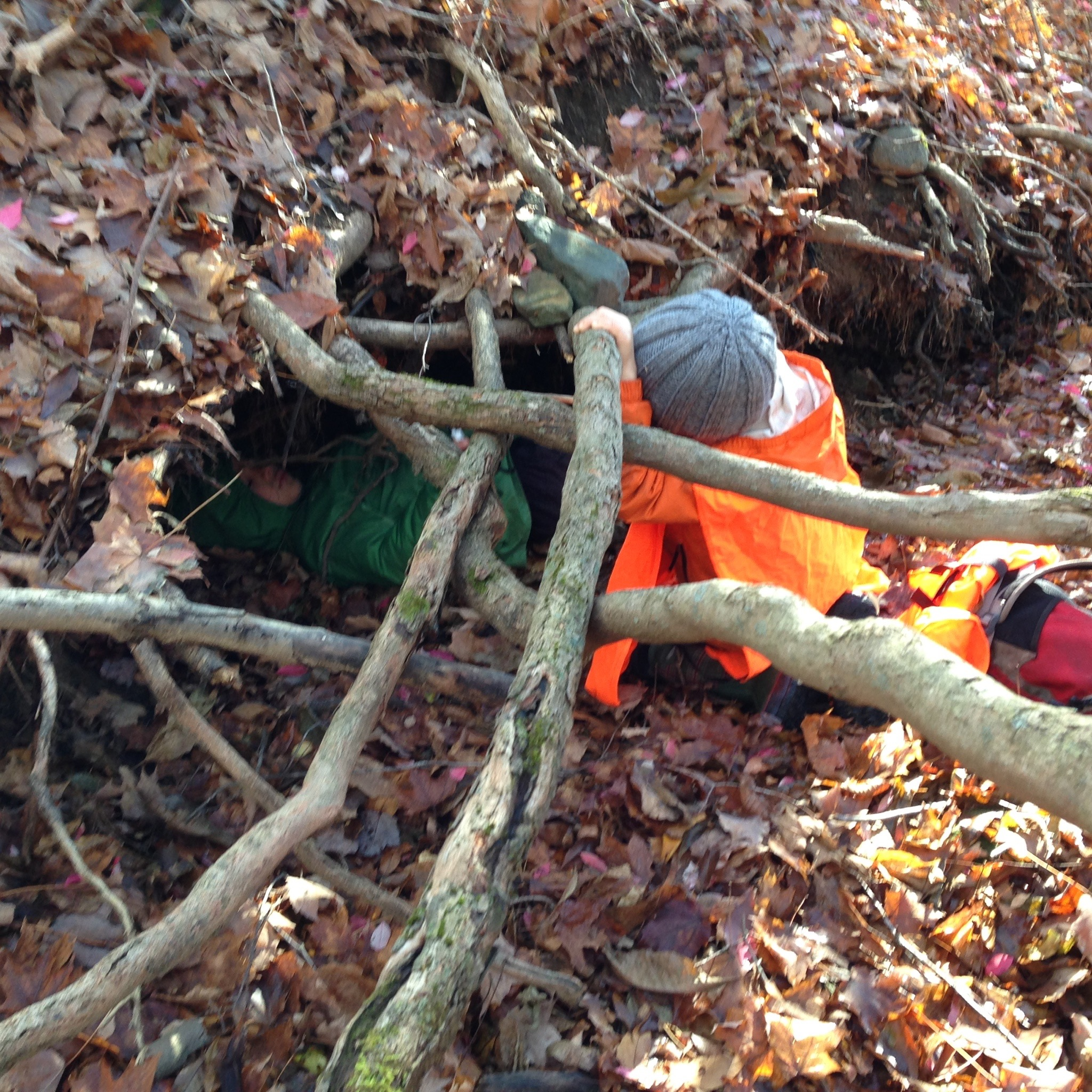 Hiding in a Root Burrow